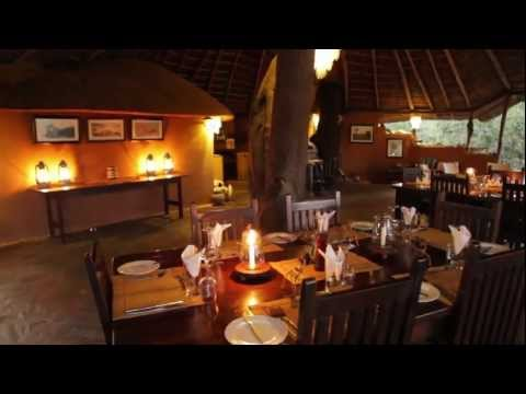 Kaingo Camp Virtual Tour