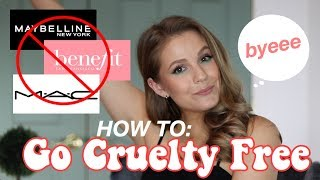 HOW TO: GO CRUELTY FREE IN 2020// Everything You've Ever Wanted To Know!