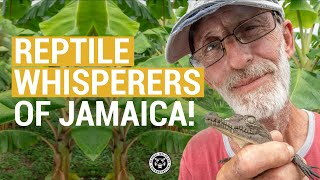 Reptile Whisperers of Jamaica!