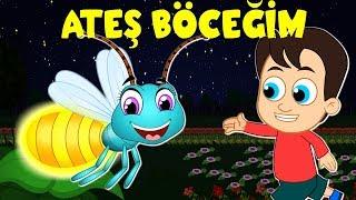 Ateş Böceğim | Balon TV | Çizgi Film Bebek Şarkıları