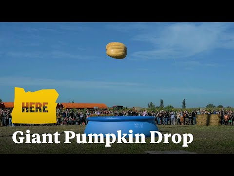 Dropping a 1200-pound Pumpkin from 100 Feet