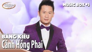 Bằng Kiều   Cánh Hồng Phai   Thúy Nga Music Box #3