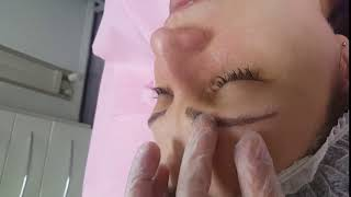 Healed Microbladed Eyebrows 1st visit