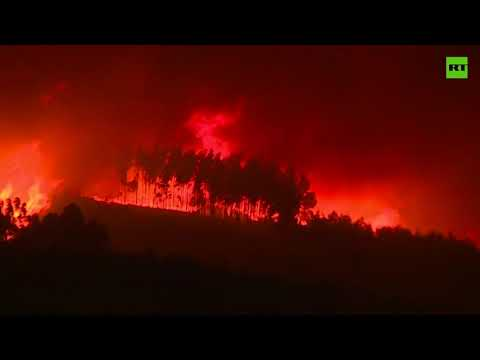 Portugal consumed by wildfires as 1,000 firefighters combat the flames