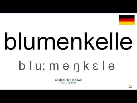 How to pronounce: Blumenkelle (German)