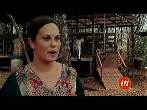 Entrevistando a una productora de leche de cabra