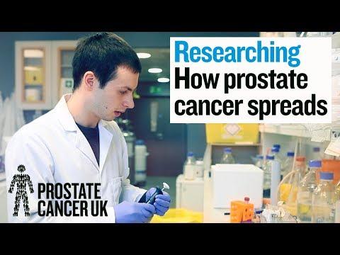 Nem tud segíteni az antibiotikumokat a prosztatitisben