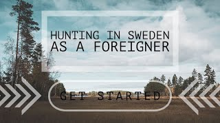 HUNTING IN SWEDEN – as a foreigner