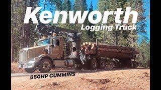 BACK TO LOGGING! KENWORTH T800 W/ 550HP CUMMINS!