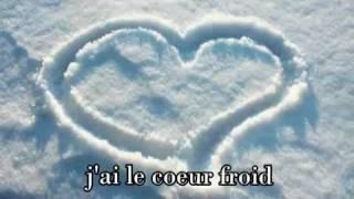 Celine Dion - Comme Un Coeur Froid (Lyrics)