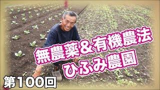 第100回 ココが他とは違う!無農薬&有機農法 ひふみ農園