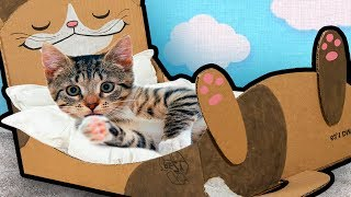 diy-cat-bed-from-cardboard-%f0%9f%90%b1-craft-ideas-for-cats-kittens