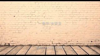 林奕匡 Phil Lam - 一雙手 附譜Violin Cover by Terrytungtung
