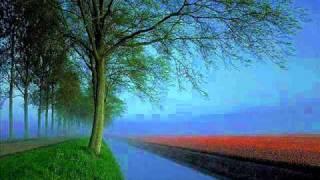 Jo Na Mil Sake Wohi Bewafa - Noor Jahan (with perfect lyrics)