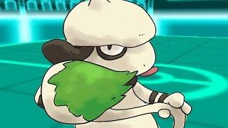 Smeargle  - (Pokémon) - ★~EPIC SMEARGLE SWEEP~★ #2