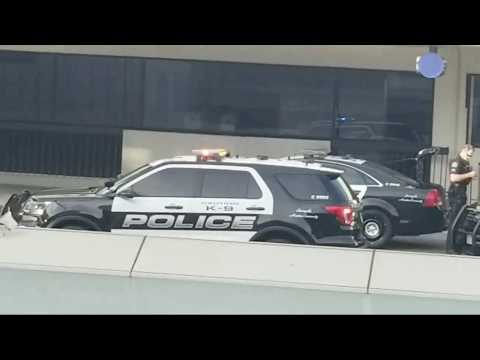 Suspicious package  lax airport police K9 dog  Sits down by a  Bag