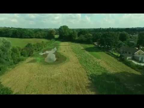 Friends of Ashtead Rye Meadows Wetlands video 5