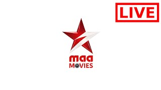 Star Maa Movies Live   Watch Maa Movies Channel Online