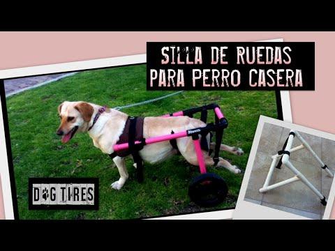 Dog Tires - Silla de Ruedas Para Perro Hecha en Casa