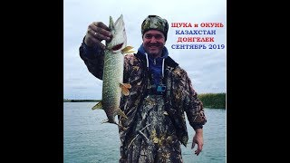 Рыбалка в казахстане 2020 канал кушум форум