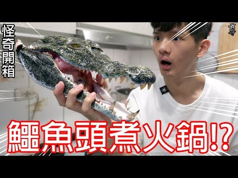 買了一顆鱷魚頭來煮火鍋!?
