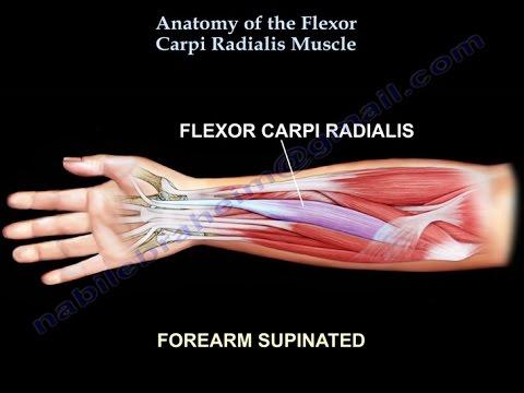 La température anormalement basse la douleur dans les muscles