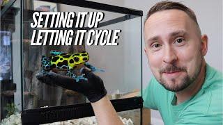 Setting Up A DART FROG Vivarium Step By Step - Bioactive | Jay Wilson