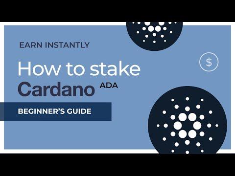 Cum să faci rapid 1000 fără investiții