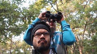 Pehli hi Safari me Tiger   Pench National Park   Part 1   Ss vlogs :-)