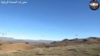 preview picture of video 'Entrainemment de pigeon voyageur maroc - khenifra (AZPC)تداريب الجمعية الزيانية بنواحي مدينة خنيفرة'
