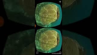 Подводный мир в 3D 360 градусов!