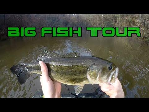 Video tipi da pesca di nodi