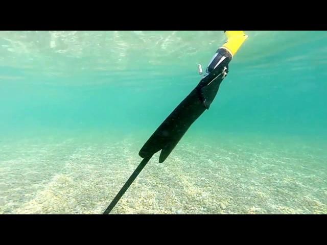 AquaMav — беспилотник, способный летать инырять