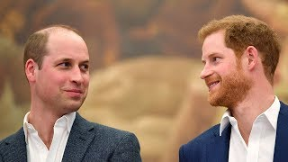 video: Duke of Sussex acknowledges a 'rift' with Prince William: 'We're certainly on different paths at the moment'