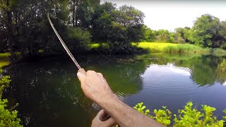 FOUR FLY Fishing Challenge!