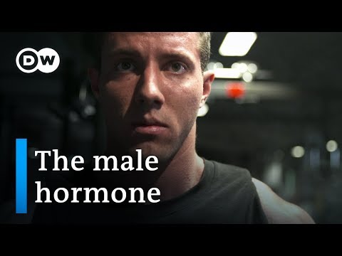 Testosterone — new discoveries about the male hormone | DW Documentary