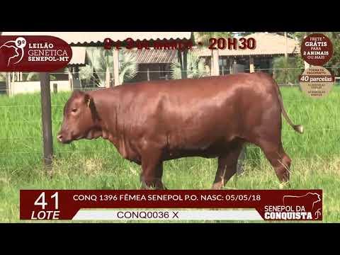 CONQ-1396
