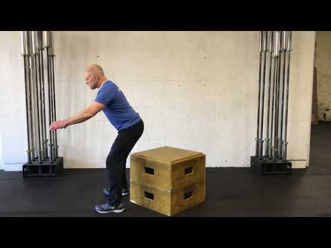 Bodyweight Box Squat
