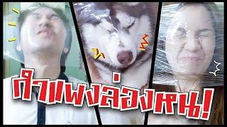 กำแพงล่องหน!! แกล้งหมา!! // ไม่มั่นใจว่าแกล้งหรือโดนแกล้ง?!