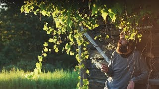 """+@ """"WATCHING THE SUN SET"""" [TITUS ANDRONICUS DOCUMENTARY CLIP]"""