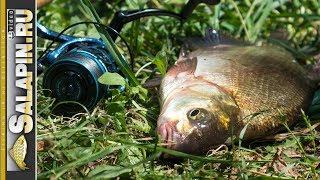 Весь июнь на рыбалку плюнь