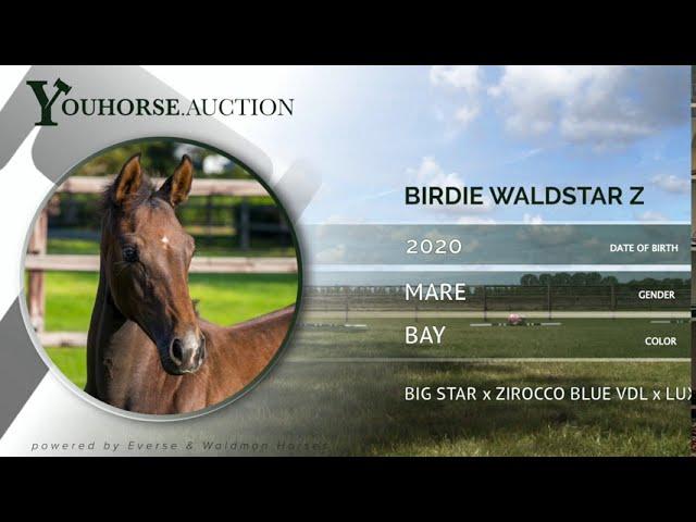 Birdie Waldstar Z