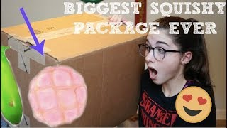 BIGGEST SQUISHY PACKAGE EVER!