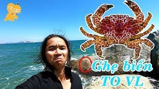Phần 2 - Trải nghiệm THÚ TÍNH cắm trại gần biển - Xe Ôm Vlog