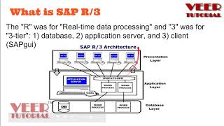 Understand what is SAP R/3 Structure?