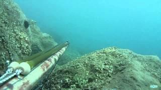 Pesca Sub: 9 Pesci con Tramonto Rosso Fuoco.18/Luglio/2014