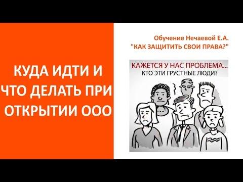 Открыть ООО  Куда идти и что делать  Пошаговая инструкция для самостоятельной регистрации ООО