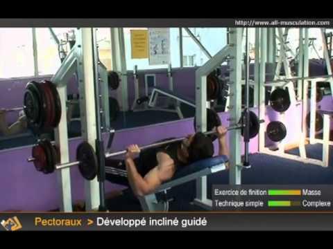Comme insérer la croissance des muscles
