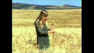 Joni Mitchell - Come To The Sunshine