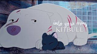 Into Your Arms | Kitbull
